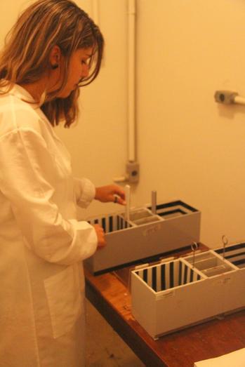Laboratório-de-Neuropsicofarmacologia03